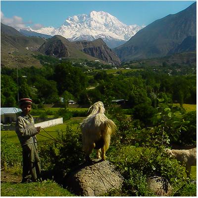 Visit Ayun Village